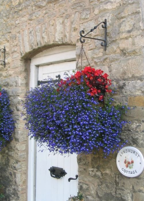 Lyndhurst Cottage Flowers in Stow on the Wold