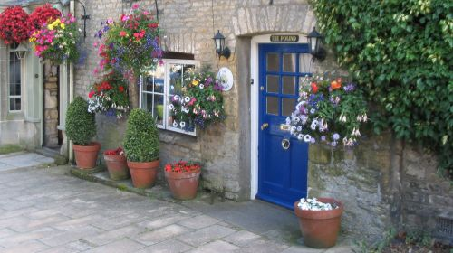 Stow on the Wold Flowers
