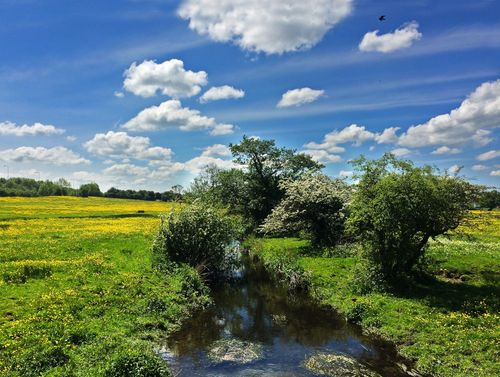 River Blythe near Malvern Park,Solihull