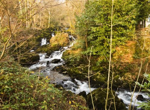 Waterfall in Rydal Park