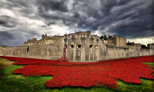 Remembered - Tower of London