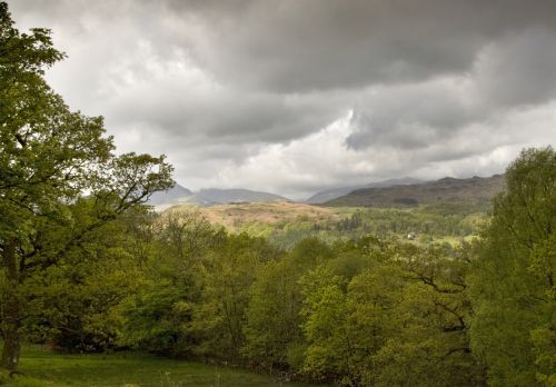 Looking out towards Loughrigg