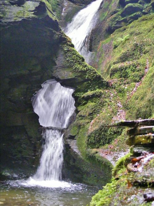 The Kieve- St.Nectan's Glen