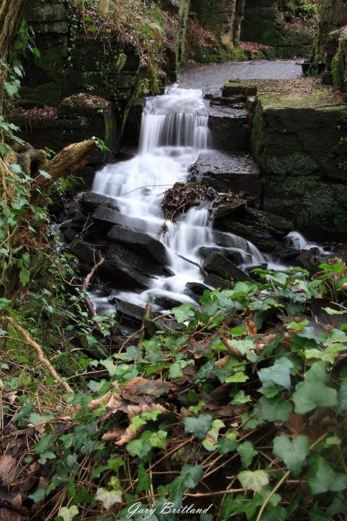 Hapton Castle clough waterfall