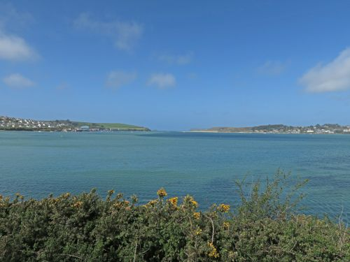 Camel Trail near Padstow