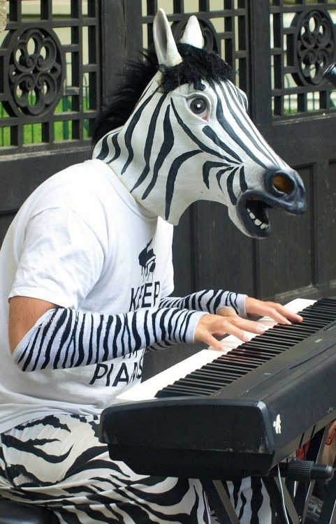 Zebra playing piano