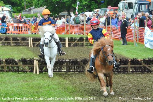 Pony Racing, Castle Combe Steam Rally & Country Fair, Wiltshire 2016
