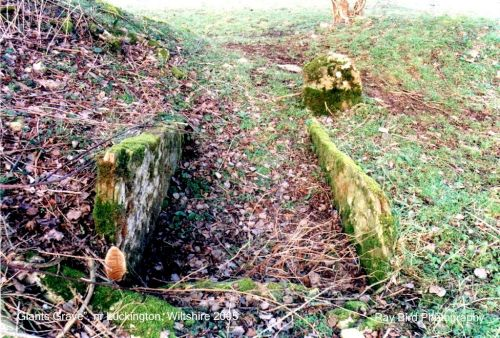 'Giants Grave' Luckington, Wiltshire 2005