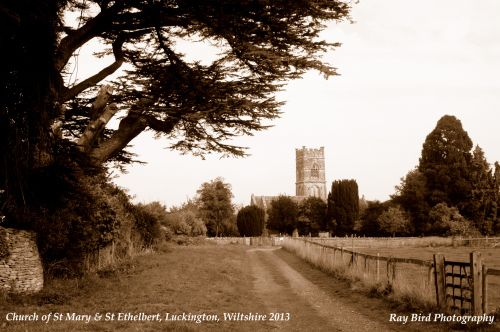Church of St Mary & St Ethelbert, Luckington, Wiltshire 2013