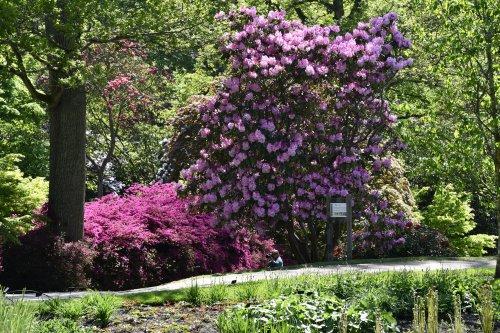 Wakehurst Place Garden