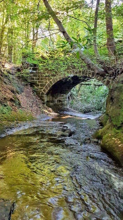 Bridge on deans brook