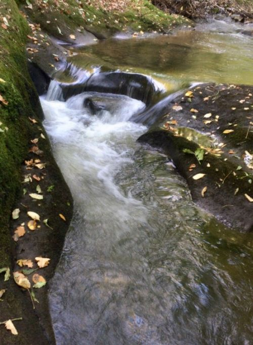 Deans brook