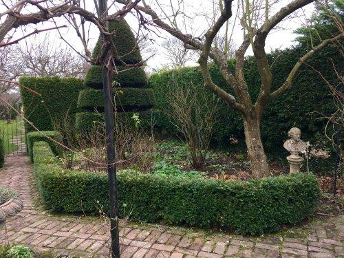 Pathway to Spring, gardens in Durham City.