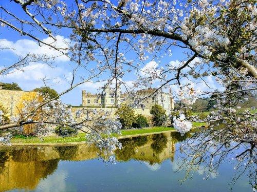 Spring at Leeds Castle
