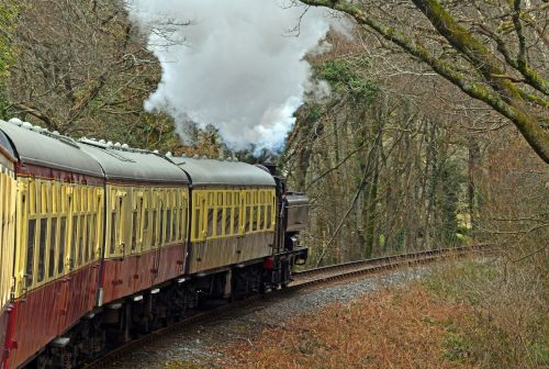 South Devon Railway, Buckfastleigh