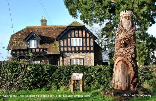 Wellingtonia Tree Sculpture &,Ridge Lodge, Yate, Gloucestershire 2019