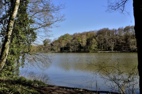 Newmillerdam Country Park