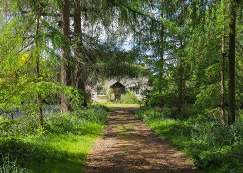 Beautiful Woodland Cottage, Kent