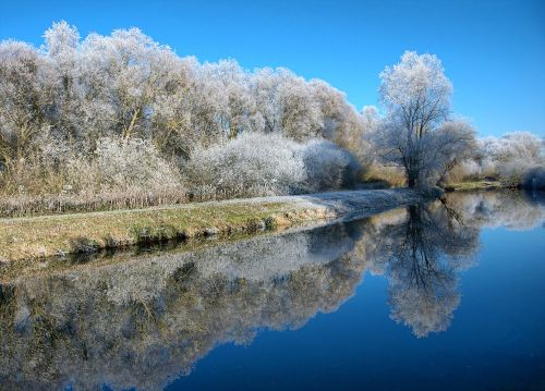 Hoar frost on River Nene, Northamptonshire.