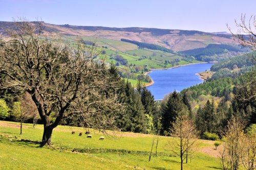The View From Lockerbrook to Lower Derwent Reservoir