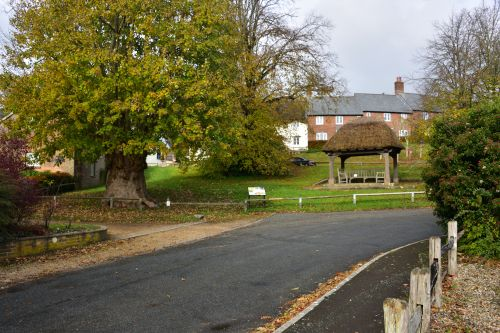 The Tolpuddle Martyr's Oak Tree and Memorial Shelter
