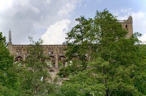 Jedburgh Abbey through the Trees.