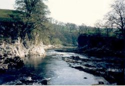 The River Wharfe near Burnsall, North Yorkshire