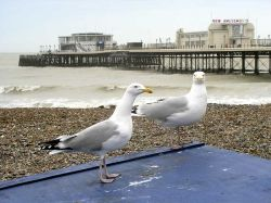 A picture of Worthing