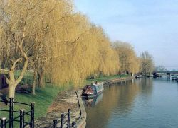 The River Cam at Ely, Cambridgeshire