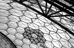 A picture of The Eden Project