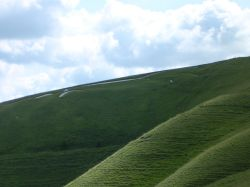 A picture of Vale of White Horse