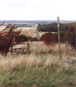 The Ackling Dyke; A Roman road from Salisbury in Wiltshire to Dorchester in Dorset.