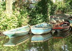Boats of the River Wey, Guildford, Surrey