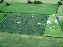 A picture of Mickey Miller's Family Play Barn & Maize Maze