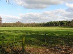 Marbury Park, Cheshire