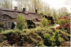 Thatched cottages in Baslow, Derbyshire 1993