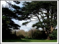 The Lovely grounds of Royal Victoria Country Park, Hampshire