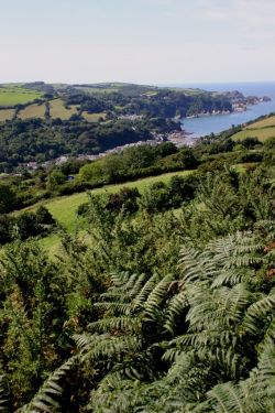 Looking over Combe Martin, Devon