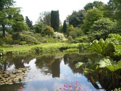 Beth Chatto Gardens, Essex