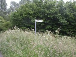 Sign post. Somerset, England