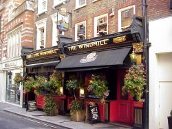 The Windmill (off Picadilly Circus) London