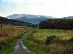 View Of Cheviot, the Cheviot Hills, Northumberland.