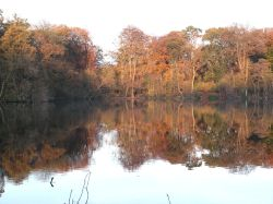 Autumn at Colemere near Ellesmere, Shropshire