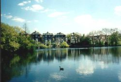 London - a picture of Ponds of Hampstead Heath