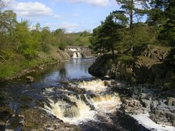 Low Force, at Bowlees on the River Tees, Upper Teesdale, County Durham.