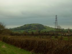 A picture of Brent Knoll