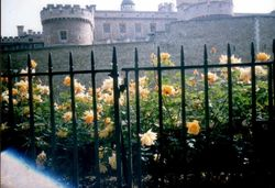 London - Tower of London, May 1998 Wallpaper