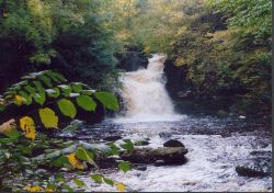 The falls at Askrigg, North Yorkshire