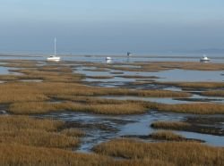 The salt marsh by Hurst Castle, near Lymington, Hampshire, UK