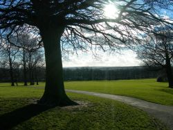 'Graves Park near the farm'in Sheffield